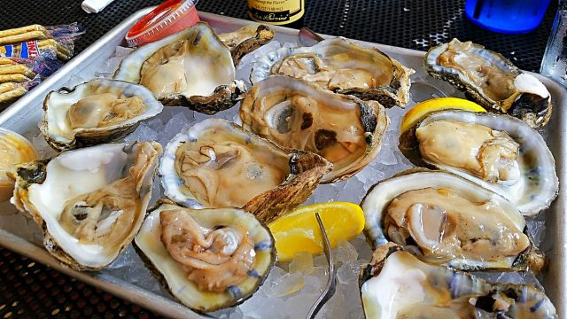 Chincoteague Oysters (1)