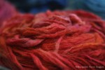 "Hand Dyed Angora/Merino Pencil Roving ""Flame"""