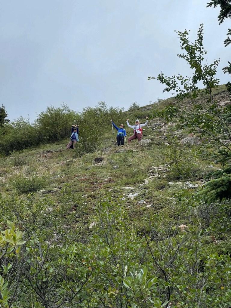 Mt. Healy Denali