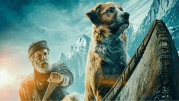 Film Roar 03 – The Call of The Wild