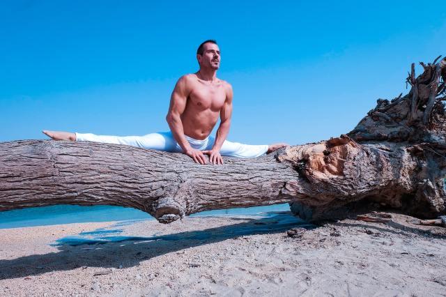 Macaulay Culkin's Wellness Island Festival Has Been Cancelled