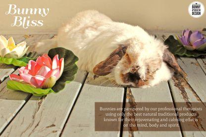 tofu-bunny-bliss4