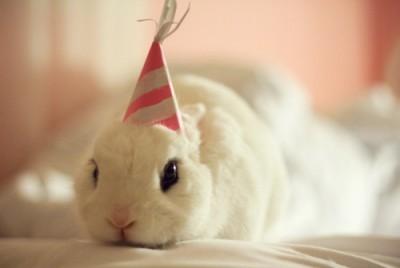 birthday-buns18