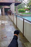 Checking out the poolside