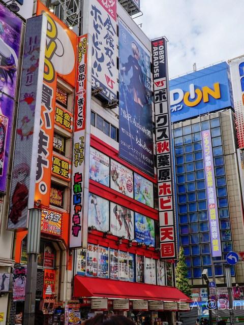Akihabara Tour with Magical Trip Japan!
