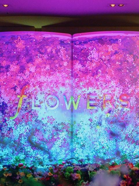 Sakura Wonderland: Flowers By Naked Exhibition in Tokyo