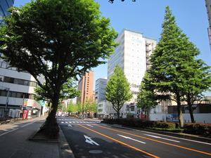仙台・広瀬通り