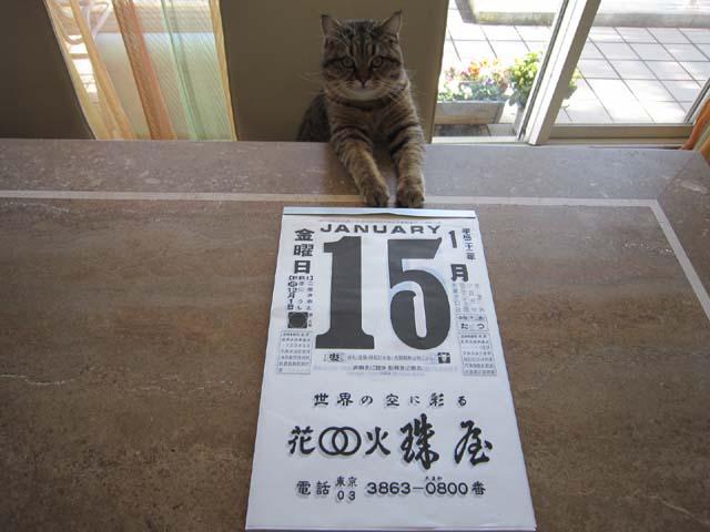 日めくりカレンダー2