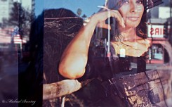 Sophia Loren Window Display, Hollywood, Los Angeles, California. Kodak e200 35mm Color Reversal Slide film.