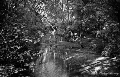 Robert E. Lee Park, Baltimore County, Maryland. Ilford FP4+ 35mm BW film.