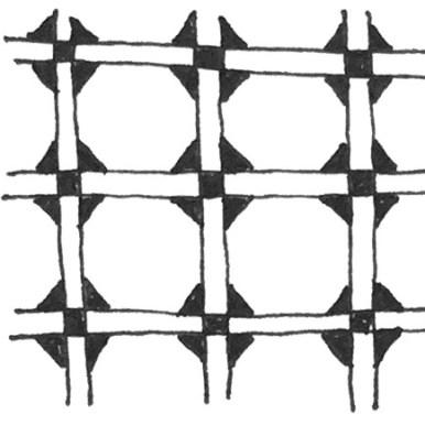 Double Flora Zentangle Pattern
