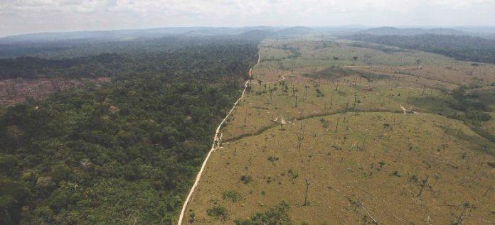 bolsonaro amazzonia