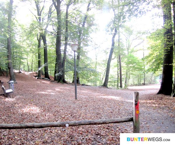Hier beginnt der Alsterwanderweg in Poppenbüttel