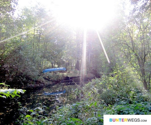 09-alsterwanderweg-bunterwegs