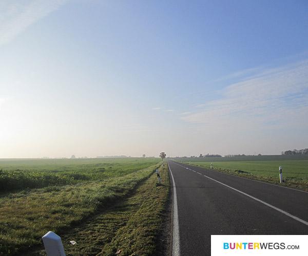 Zischen Jüterbog und Annaburg * BUNTERwegs