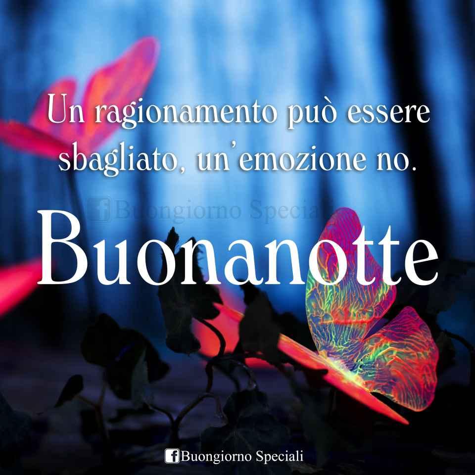 Bosco con farfalle colorate e luminose, scritta:  Un ragionamento può essere sbagliato, un'emozione no. Buonanotte.