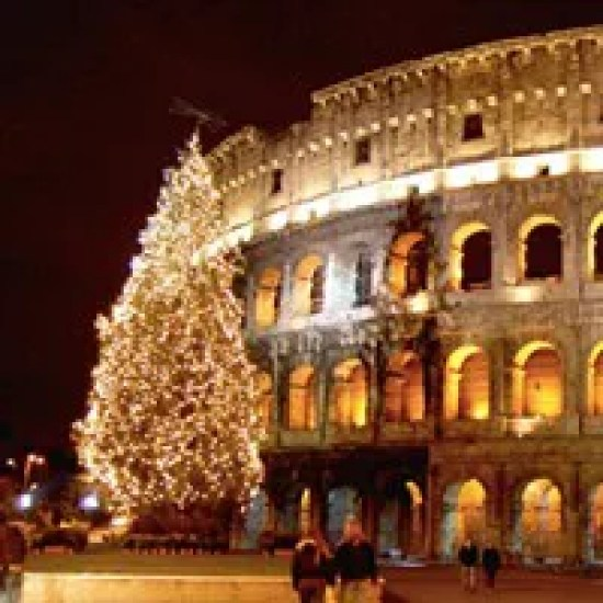 tree-colosseo2