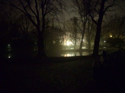 Seen in one of the parks on a foggy eve in Amsterdam.