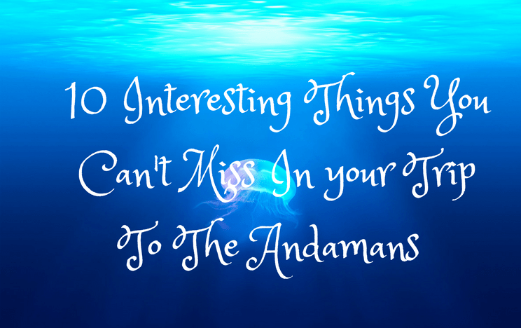 10 Interesting Things To Do In Andamans