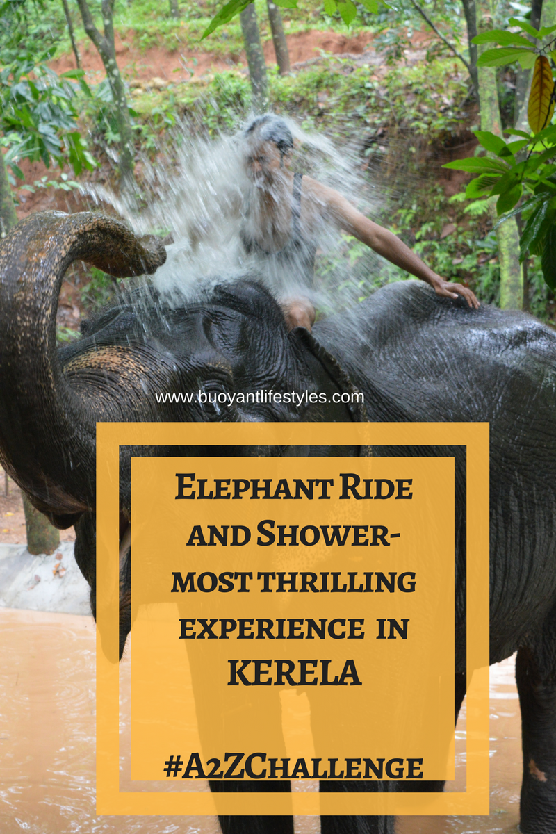 Elephant Ride and Shower- most thrilling experience in Kerela! #A2ZChallenge