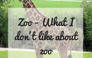 #zoo #wildlife #conservation #forest #guwahatiblogger #travelblogger