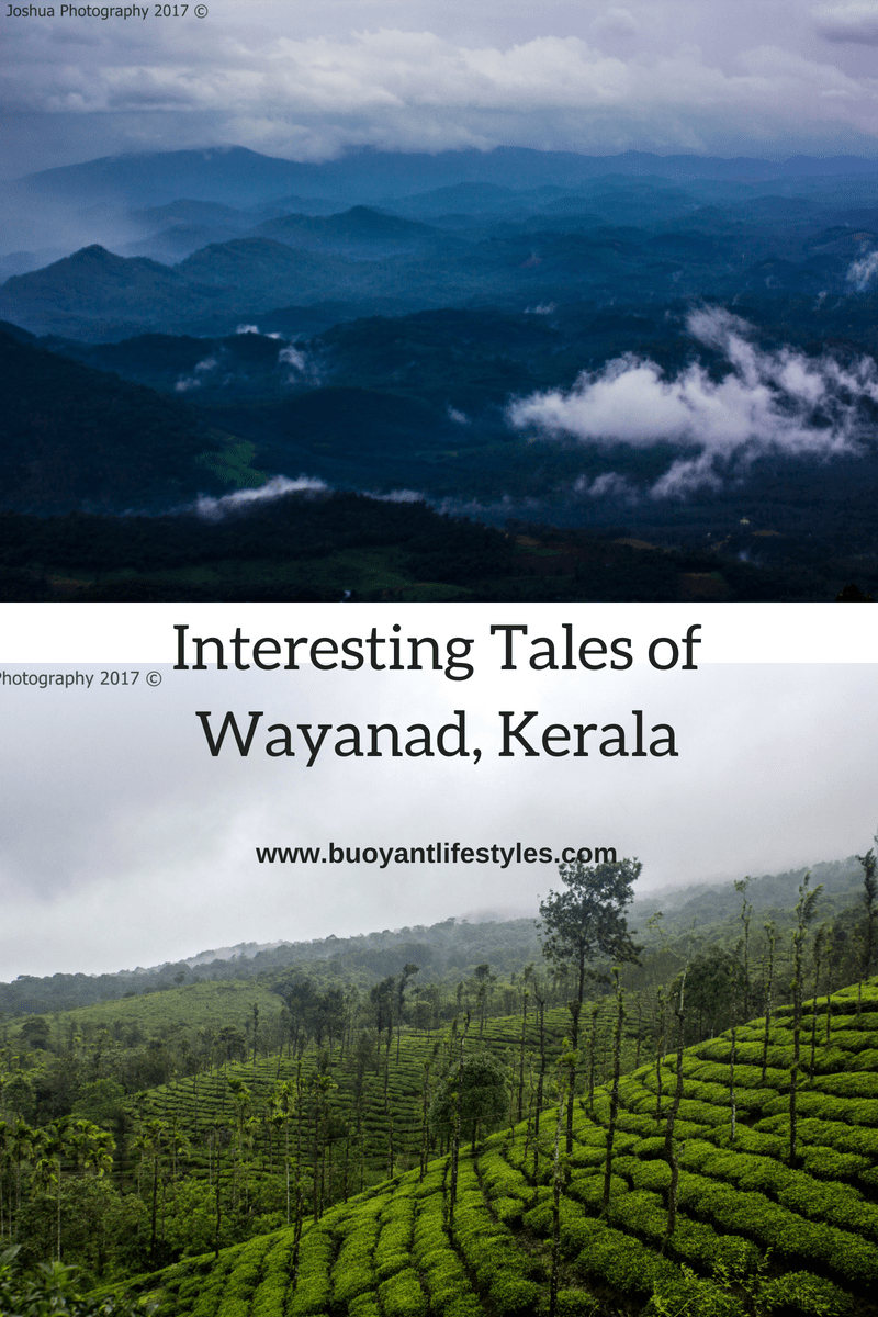 Interesting Tales of Wayanad in Kerala