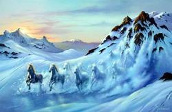 Wild_horses_avalanche