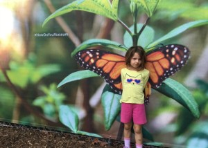 Everything You Need To Know About The Butterfly Pavilion At The Natural History Museum, Now Open Through October 16th