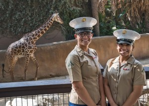 The LA Zoo Celebrates Fleet Week With FREE Admission Veterans & Military Personnel