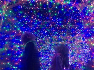 The LA Zoo Lights Are Shining Bright Through January 7th!