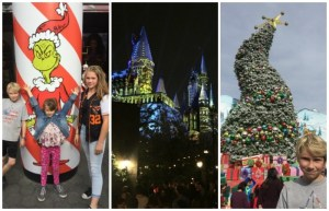The Grinch, Harry Potter And The Holidays, Oh My!