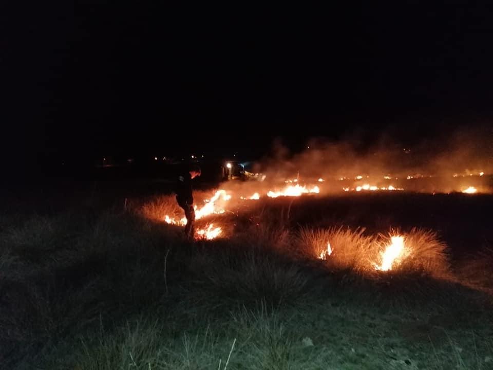 Kundaklanan merada çıkan yangın söndürüldü