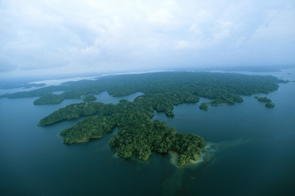 Vista aérea de la Isla de Barro Colorado, conocido laboratorio natural de Panamá en medio del Lago Gatún del Canal de Panamá