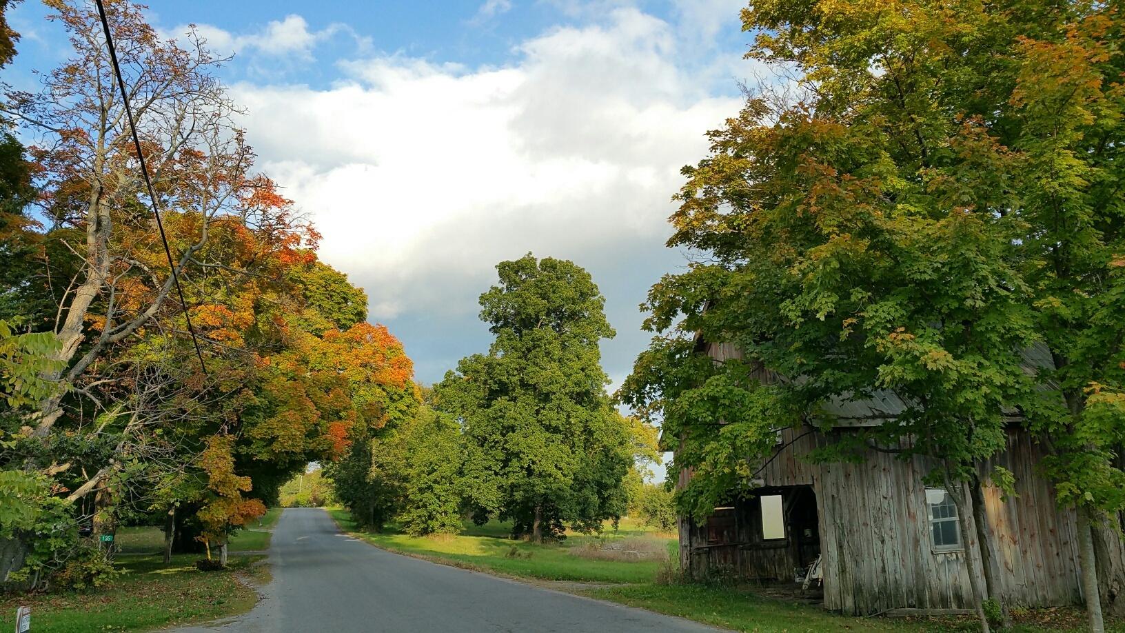Early Fall colour