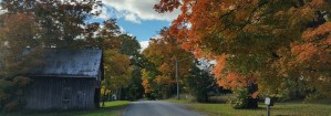 Historic Road in Autumn