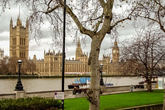 View to Westminster Palace, London