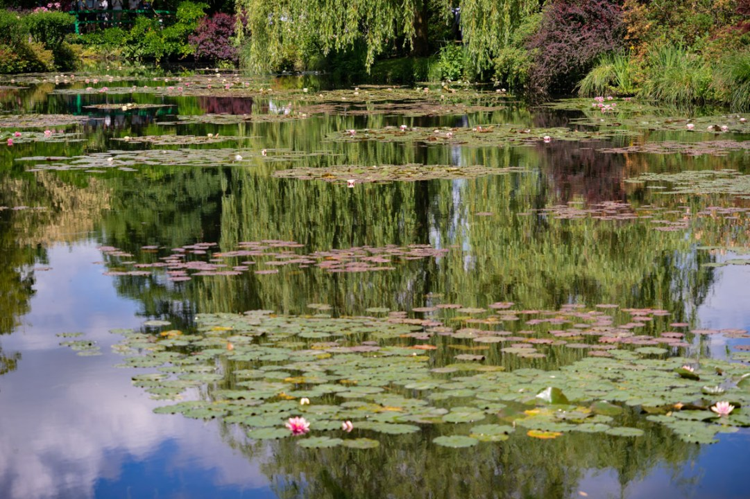Monet Gardens, Giverny