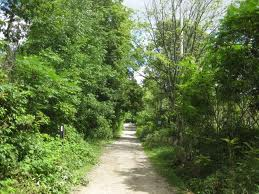 This is the rural Burlington residents want to keep - walking trails and quiet countryside.