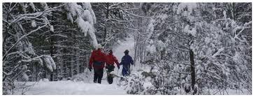 Mountsberg - winter trails