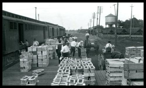 Pic 3 Freeman Station 1920 baskets on platform
