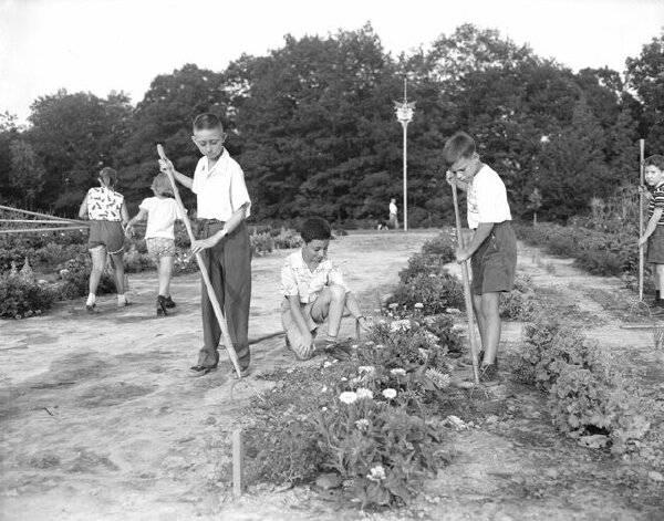Royal Botanical Gardens children's garden, 1955