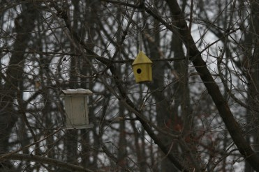 Birdhouses at High Park in Toronto, ON