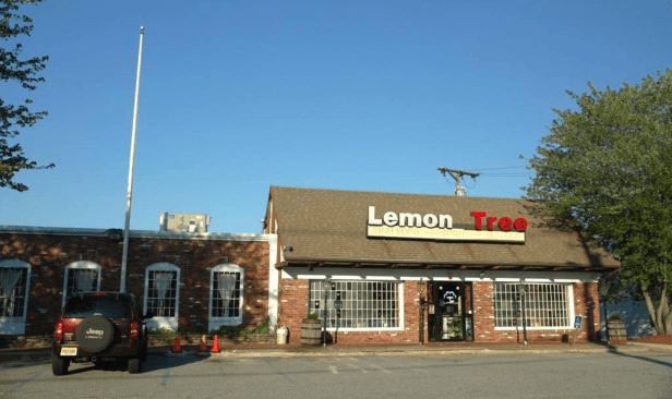 Lemon Tree, Burlington MA