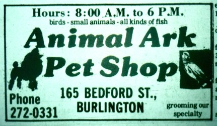 Animal Ark Pet Shop, Burlington MA