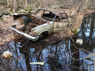 1963 Chevy Biscayne in woods near Fox Hill, Burlington MA