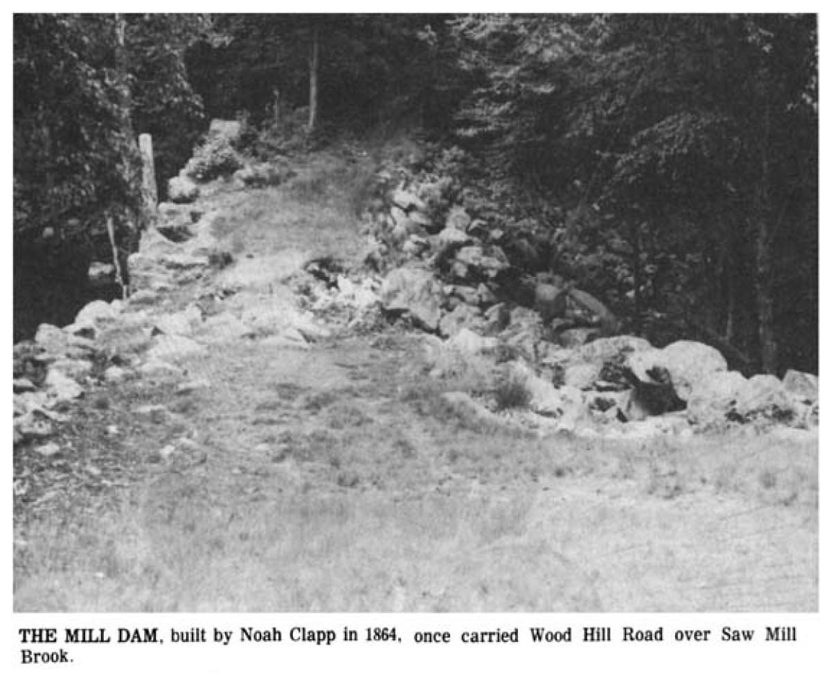 Clapp Mill dam, SawMill Road Burlington MA