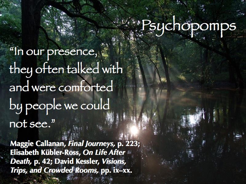psychopomps-2015_800x600-018