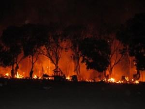 ဝင်ကရွာ ဗုဒ္ဓဂါယာဘုရားစျေးတန်းမီးလောင်ခံရစဉ်( Photo-IMNA)