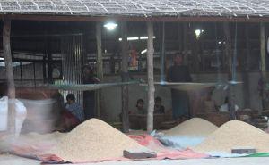 အဘော်ကျားတန်း ရေလုပ်သားမိသားစုတန်းလျား(MNA)
