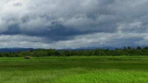 ရောင်းချခဲ့သည့် လယ်ယာမြေများနှင့် ဒီရေတောများ နေရာ